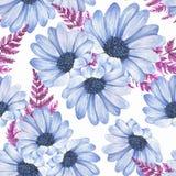2无缝花卉的模式 蓝色开花水彩 皇族释放例证