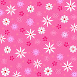 无缝花卉的模式 库存图片