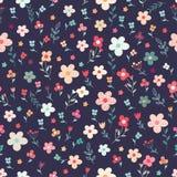 无缝花卉的模式 免版税库存照片
