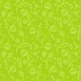 无缝花卉绿色的模式 库存图片
