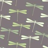 无缝蜻蜓的模式 免版税图库摄影