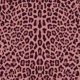 无缝豹子的模式 免版税图库摄影