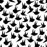 无缝鸟滑稽的模式 库存照片