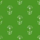 无缝绿色和白色手拉,乱画,背景的,背景花卉传染媒介样式 斯堪的纳维亚,种族样式 免版税图库摄影