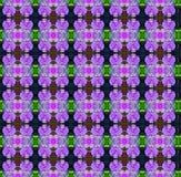 无缝紫色的兰花 库存例证