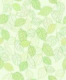 无缝backgroung绿色的小叶 免版税库存照片