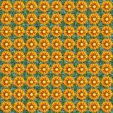 无缝composable杂色菊属植物的模式 免版税图库摄影