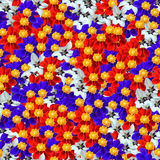 无缝composable花卉模式 库存照片