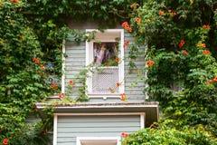 无背长椅房子窗口细节 免版税库存照片