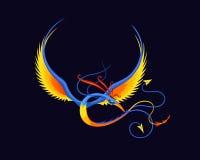 无腿的天堂鸟 免版税库存图片