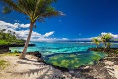 无限与棕榈树的岩石水池在热带海洋盐水湖 免版税图库摄影