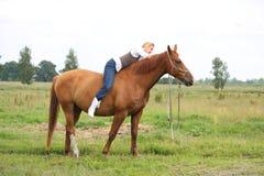 无鞍美丽的白肤金发的妇女骑乘马 库存图片