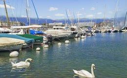 日内瓦港口,瑞士 免版税库存照片
