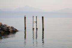 日内瓦湖,洛桑,瑞士 库存照片