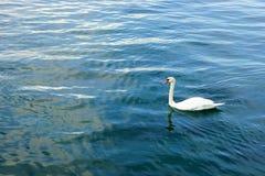 日内瓦湖 免版税图库摄影