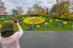 日内瓦瑞士:时钟花新的设计 免版税库存图片