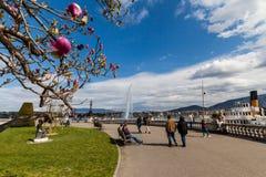 日内瓦看法2015年4月11日的 库存照片
