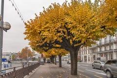日内瓦,瑞士- 2015年10月30日:市的堤防全景日内瓦 免版税库存照片