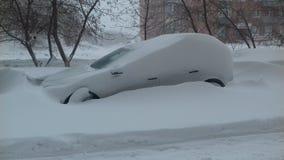 日冻结的地产休息雪结构树冬天 图库摄影