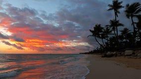 日出、海、棕榈树和热带海岛海滩蓬塔卡纳,多米尼加共和国 影视素材