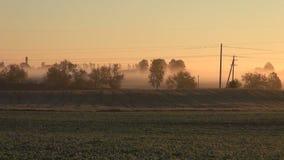 日出和夏天末端农田领域 股票录像