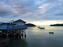日出和小船在Mangonui,新西兰港口  免版税库存图片