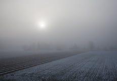 日出和雾在一片多雪的农田 免版税库存图片