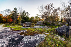 日出在一个岩石秋天森林里 库存照片