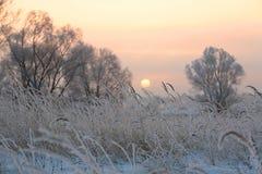 日出在冬天 免版税库存图片