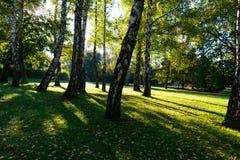 日出在早期的秋天期间的城市公园,萨格勒布在克罗地亚 免版税库存图片
