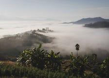 日出在有有薄雾的风景和小山se的北泰国 免版税库存照片