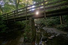 日出在有桥梁的森林里 库存图片