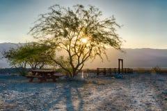日出在沙漠 库存照片