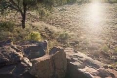 日出在澳洲内地 库存照片