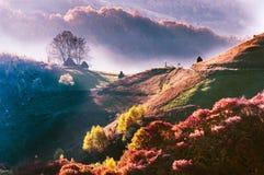 日出在特兰西瓦尼亚|Roamania! 免版税库存照片