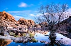 日出在约书亚树国家公园 免版税库存照片