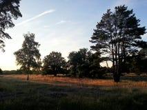 日出在荷兰打开风景 免版税库存图片