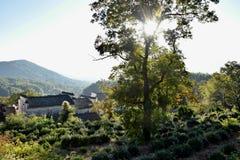 日出在西迪,一个小古老村庄在安徽在黄色山附近的中国 免版税库存图片