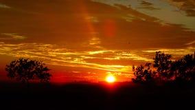日出在豪登省 库存图片