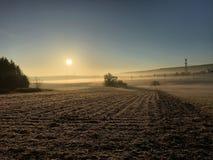 日出在阿尔萨斯 库存图片