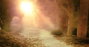 日出在食物森林里  库存照片