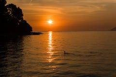 日出在马略卡海岛上的Alcudia  免版税图库摄影
