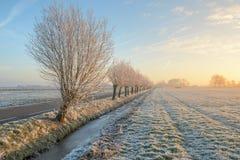 日出在Boterhuispolder 免版税图库摄影
