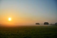 日出夏天早晨 库存照片
