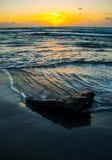 日出得克萨斯海滩深刻垂直自然海洋回收 免版税库存照片