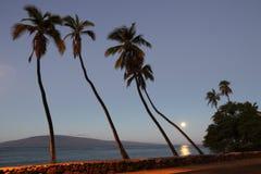 日出拉奈岛视图 免版税图库摄影