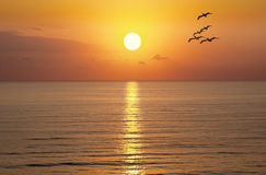 日出日落太阳海洋 图库摄影