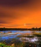 日出森林Canyon湖亚利桑那 库存图片