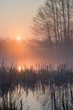 日出池塘和打破的仓促 免版税库存图片