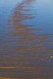 日出海滩 免版税图库摄影